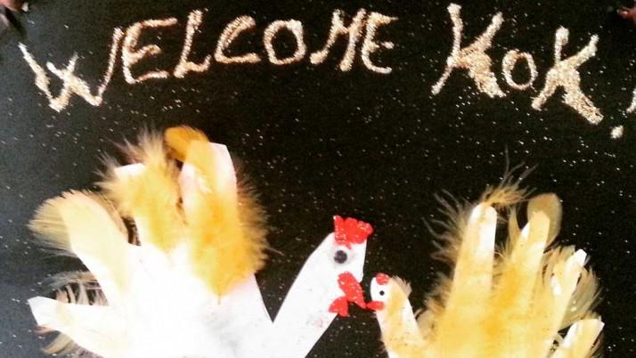 Welcome Pulcino KOK