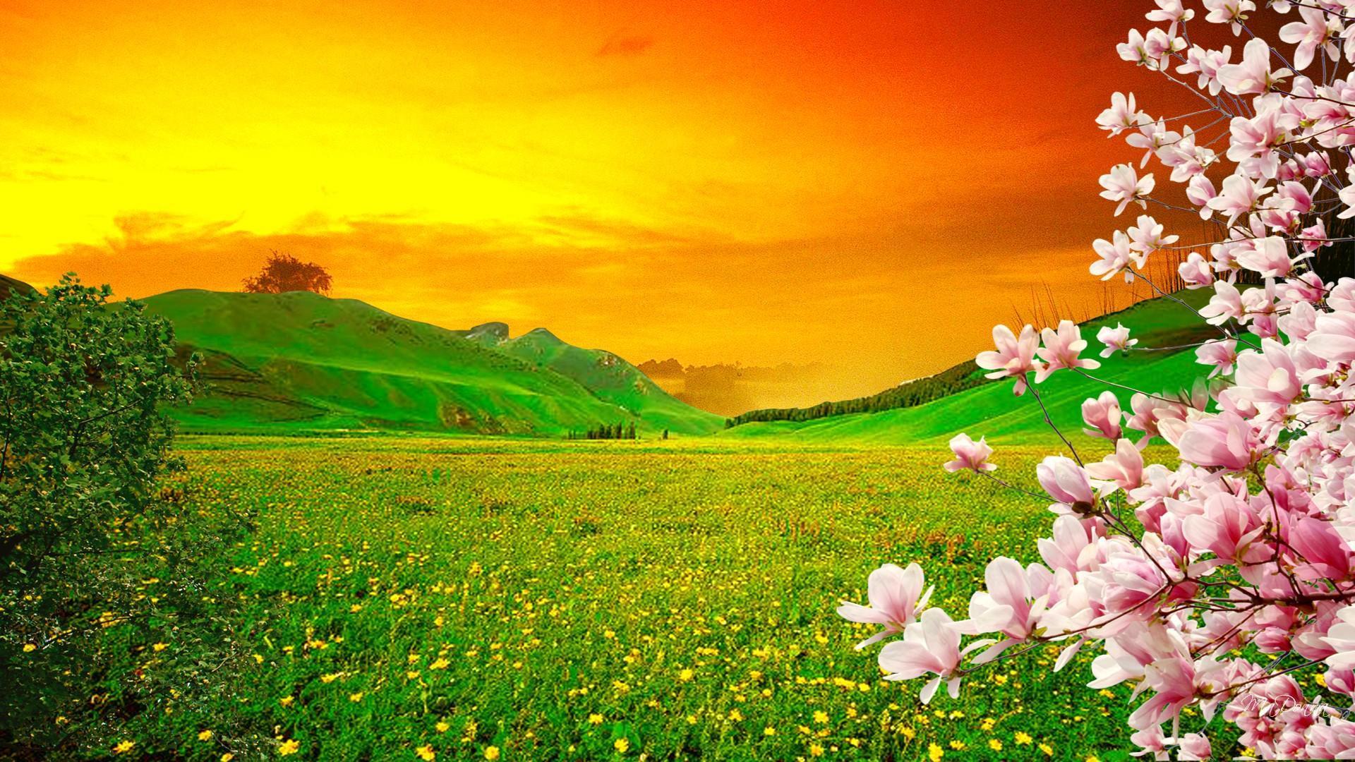 sakura-sunset