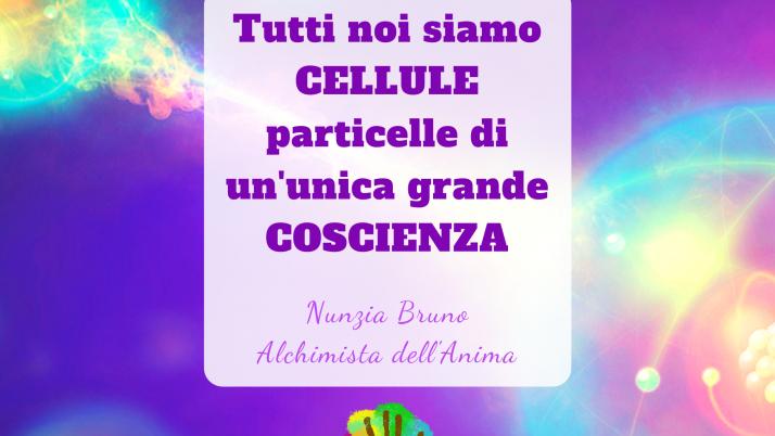 Piccola Cellula particella di un unica coscienza – Nunzia Bruno