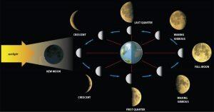 La Luna Nuova, rappresenta un seme che disgregandosi porta alla luce le qualità che vi auguro possano avere dei benefici per voi stessi e per gli altri.